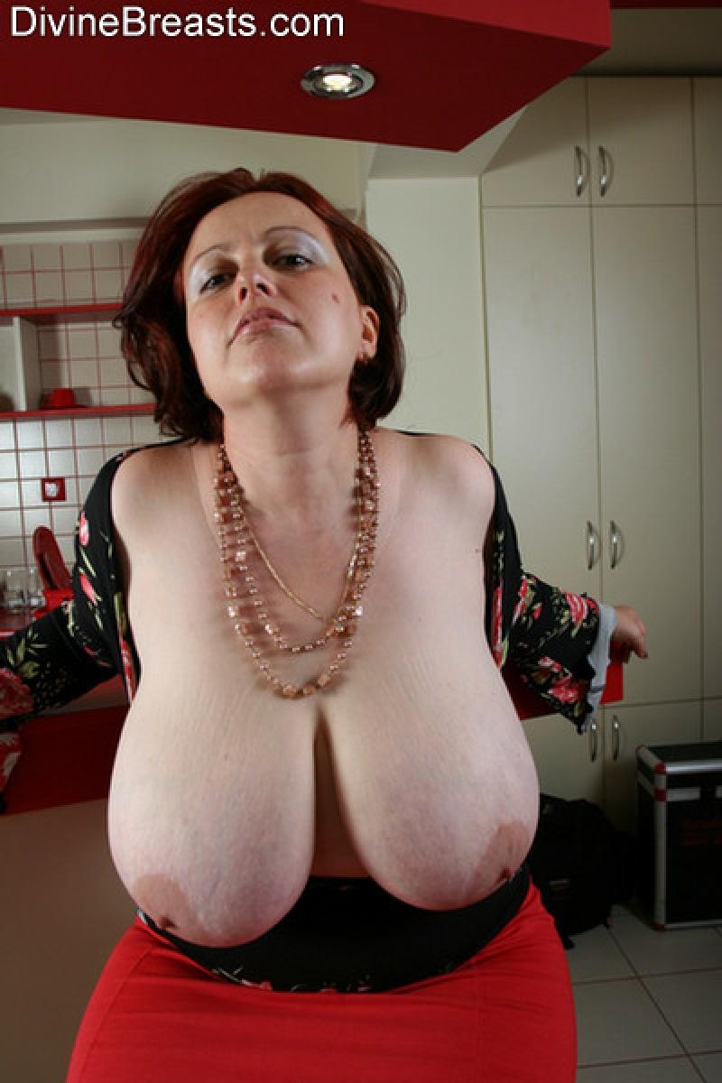 heavy hangers tits -
